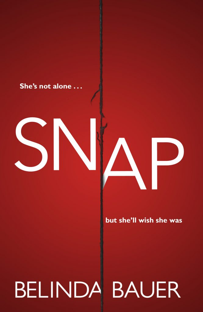 snap-cover-no-roundel-666x1024